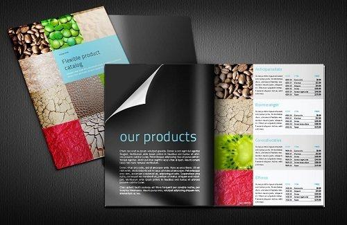 Doanh nghiệp quảng bá sản phẩm trên Catalog bằng hình ảnh và văn bản