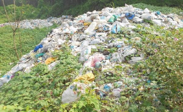 Túi nilon hủy hoại môi trường rất nặng nề