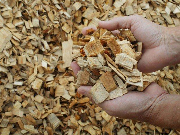 Có thể sử dụng phế phẩm ngành gỗ để tạo nên túi giấy