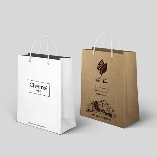 mẫu túi giấy sản phẩm dinh dưỡng