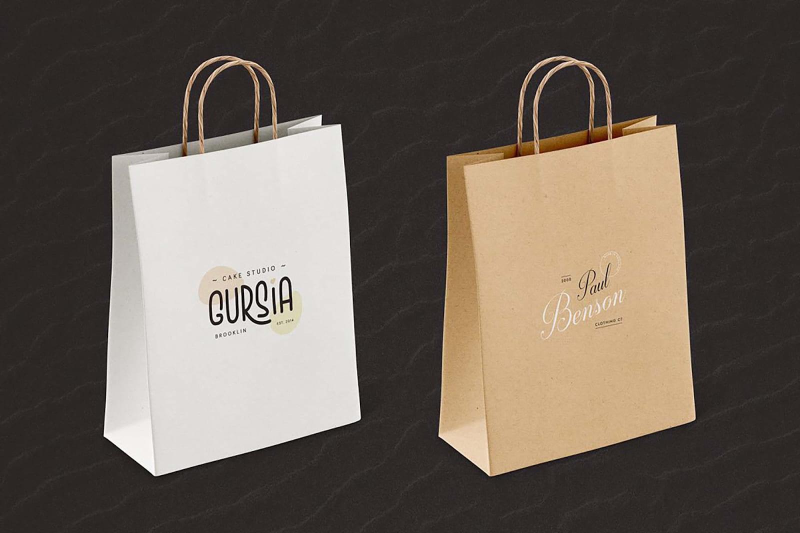 thiết kế túi giấy đựng đơn giản