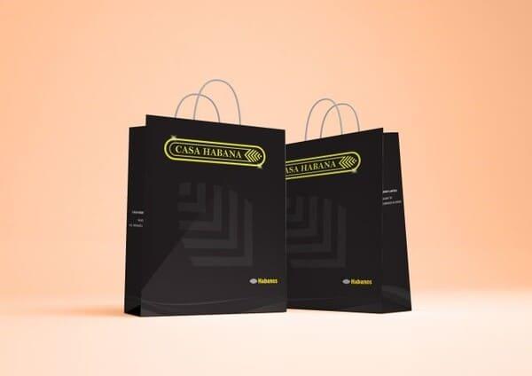 thiết kế túi giấy duplex