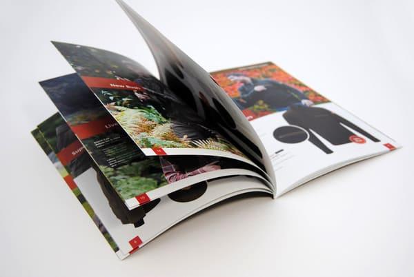 in catalogue số lượng ít giá rẻ