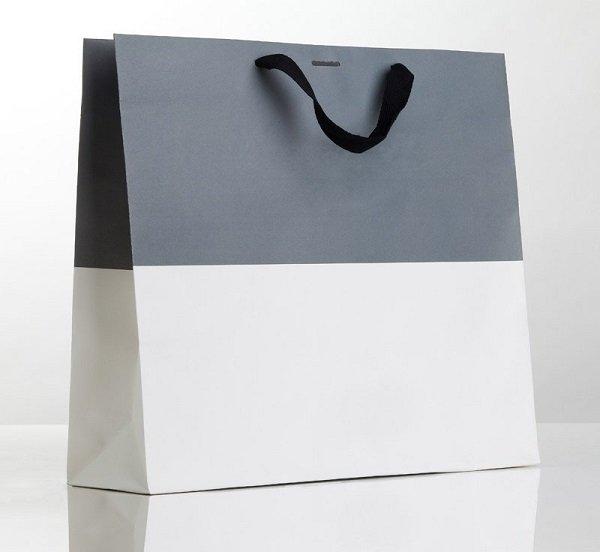 Túi giấy cao cấp đơn giản