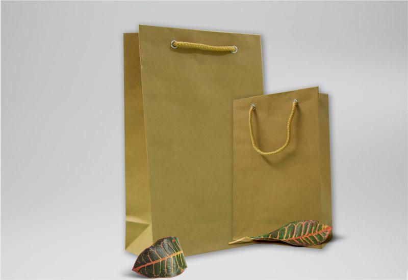 Túi giấy Kraft trơn đơn giản