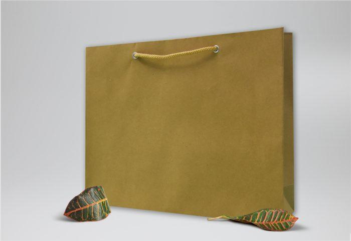 Túi giấy kraft trơn đầy tinh tế