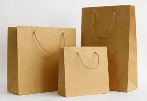 Túi giấy kraft trơn có sẵn