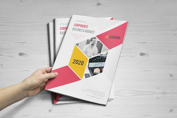bìa catalogue 12