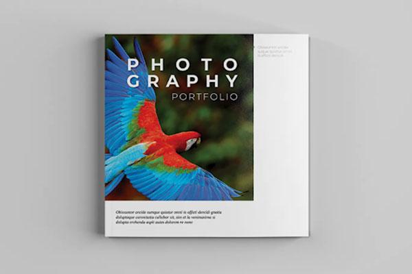bìa catalogue đẹp 4