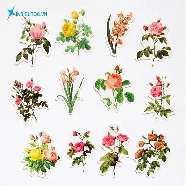 mẫu sticker hoa lá đẹp - In Siêu Tốc