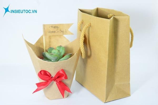 Túi giấy thân thiện môi trường - In Siêu Tốc