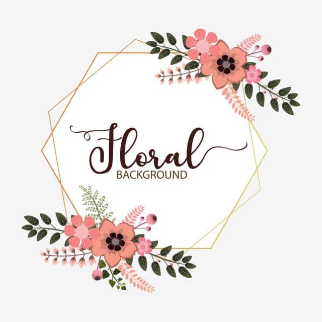 logo thương hiệu dành cho phái đẹp