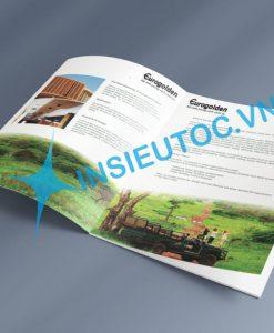 In catalogue giới thiệu doanh nghiệp