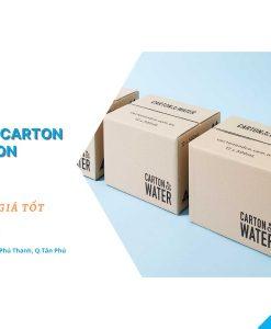 In hộp giấy carton TPHCM - In Siêu Tốc VN