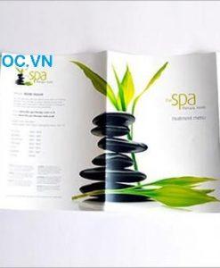 Nhận tư vấn thiết kế Catalogue Spa giá tốt tphcm