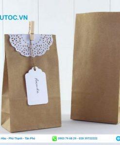 mẫu thiết kế túi giấy xi măng